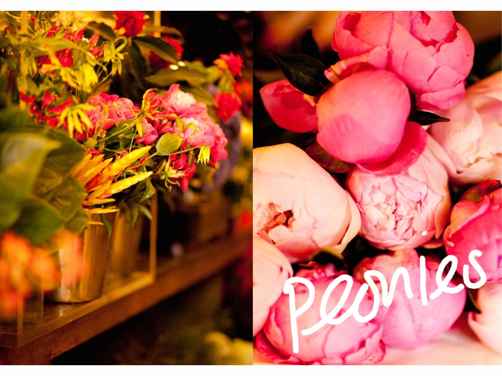 PEONIES A